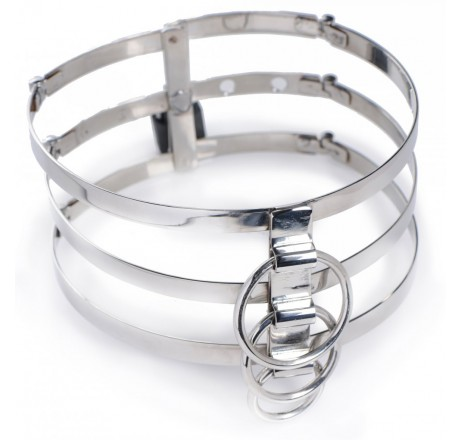 Trinity Stainless Steel Locking Collar