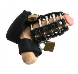 Strict Leather Gates of Hell Chastity Device